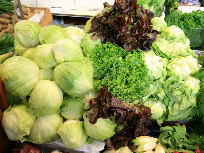A selection of lettuces with whitish iceberg lettuce heads on the left